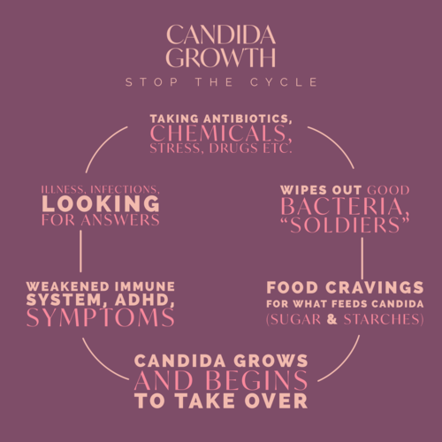 Candida Growth Info Graphic