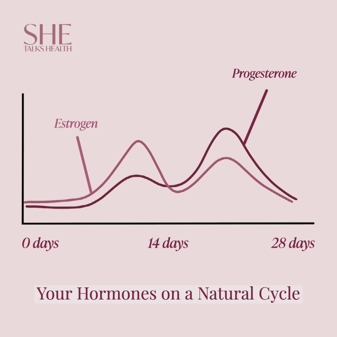 Estrogen and Progesterone